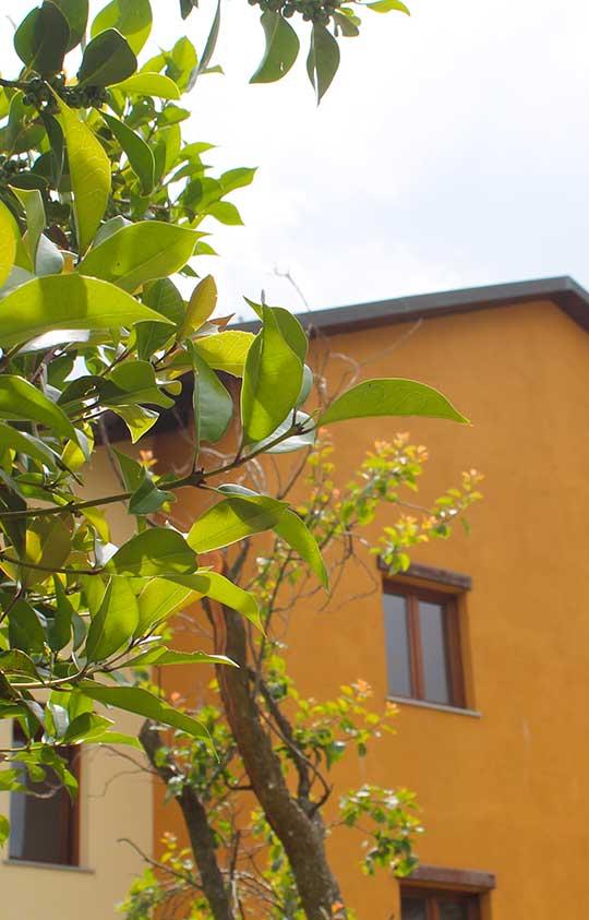 Spazio Gran Paradiso | Guest House